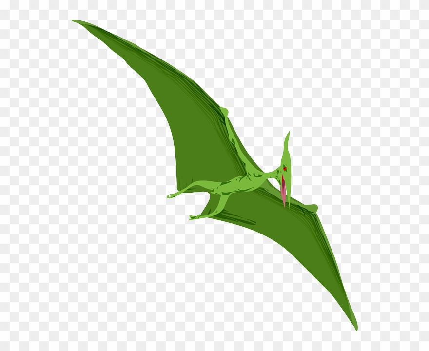 Pterodactyl Clipart.