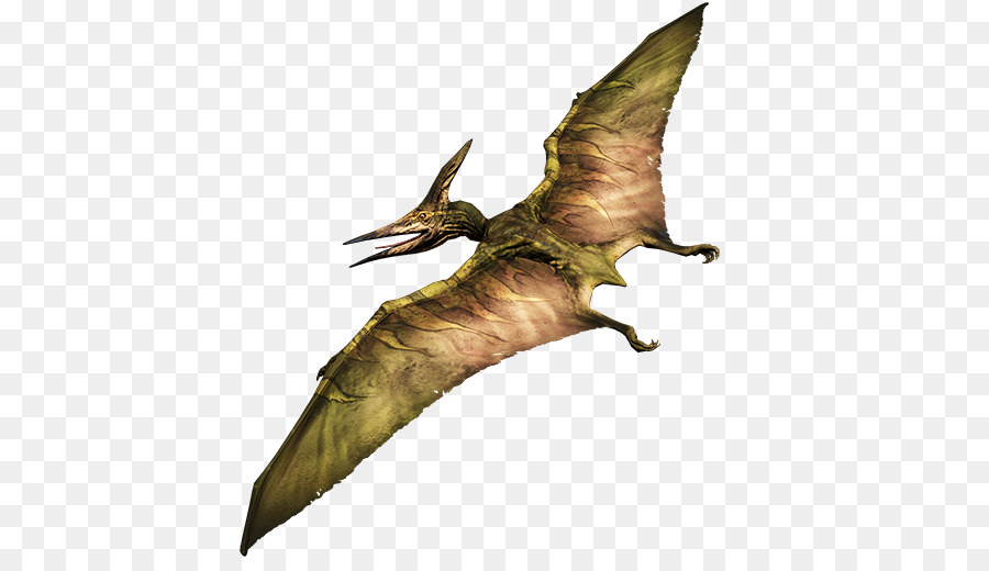 Pterodactyl Png & Free Pterodactyl.png Transparent Images.