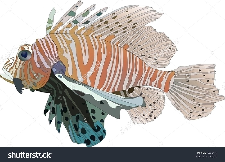 Vector Red Lionfish (Pterois Volitans).