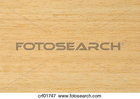 Picture of Wood surface, Koto Wood (Pterygota macrocarpa), full.