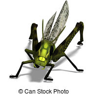 Pterygota Illustrations and Clip Art. 52 Pterygota royalty free.