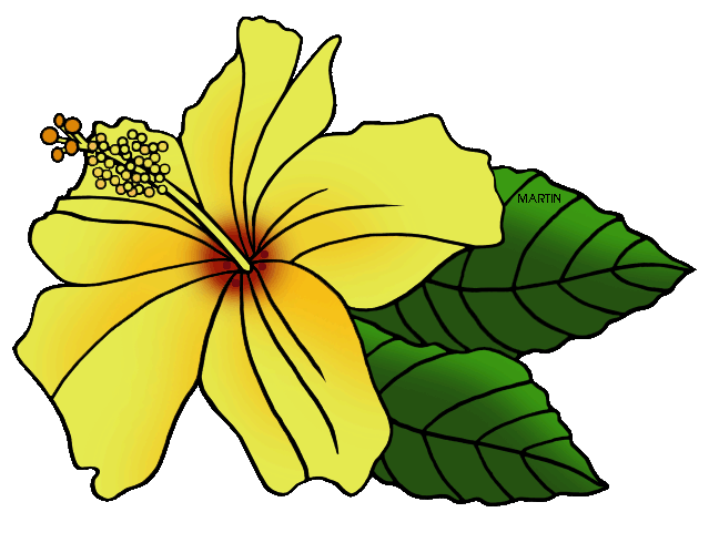 Free United States Clip Art by Phillip Martin, State Flower of.