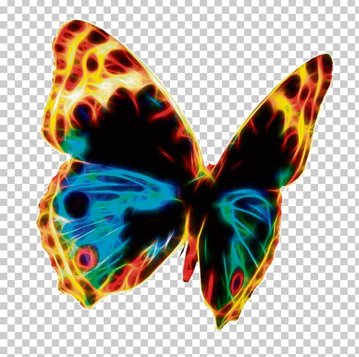 Butterfly Public Domain PNG, Clipart, Brush Footed Butterfly.