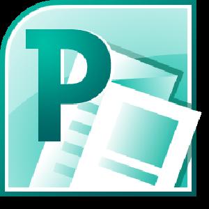 Microsoft Publisher Basics.