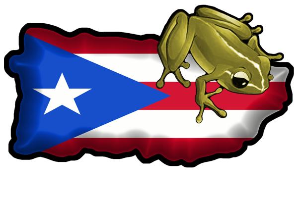 Puerto Rico Coqui Clipart.