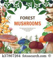 Puffball mushroom Clip Art Vector Graphics. 52 puffball mushroom.