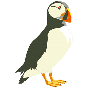 Puffin clipart free.