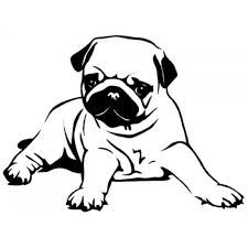 Collection of Pug clipart.