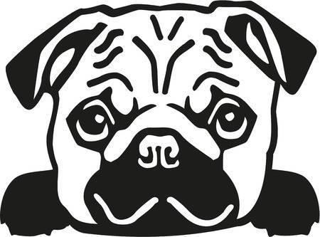 Pug clipart black and white 4 » Clipart Portal.