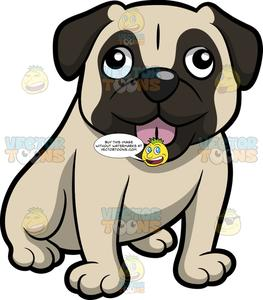 A Small Friendly Pug Dog Sticking Its Tongue Out.