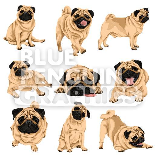 Pug Dog Bundle Set Vector Clipart.