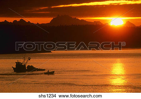 Stock Photo of Commercial Fishing/Skagit Bay, Puget Sound/NW.