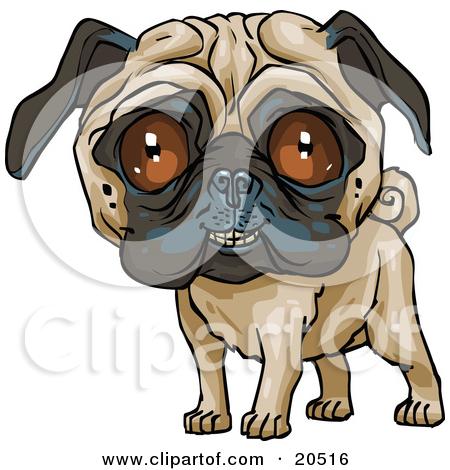 Cute pug clipart.
