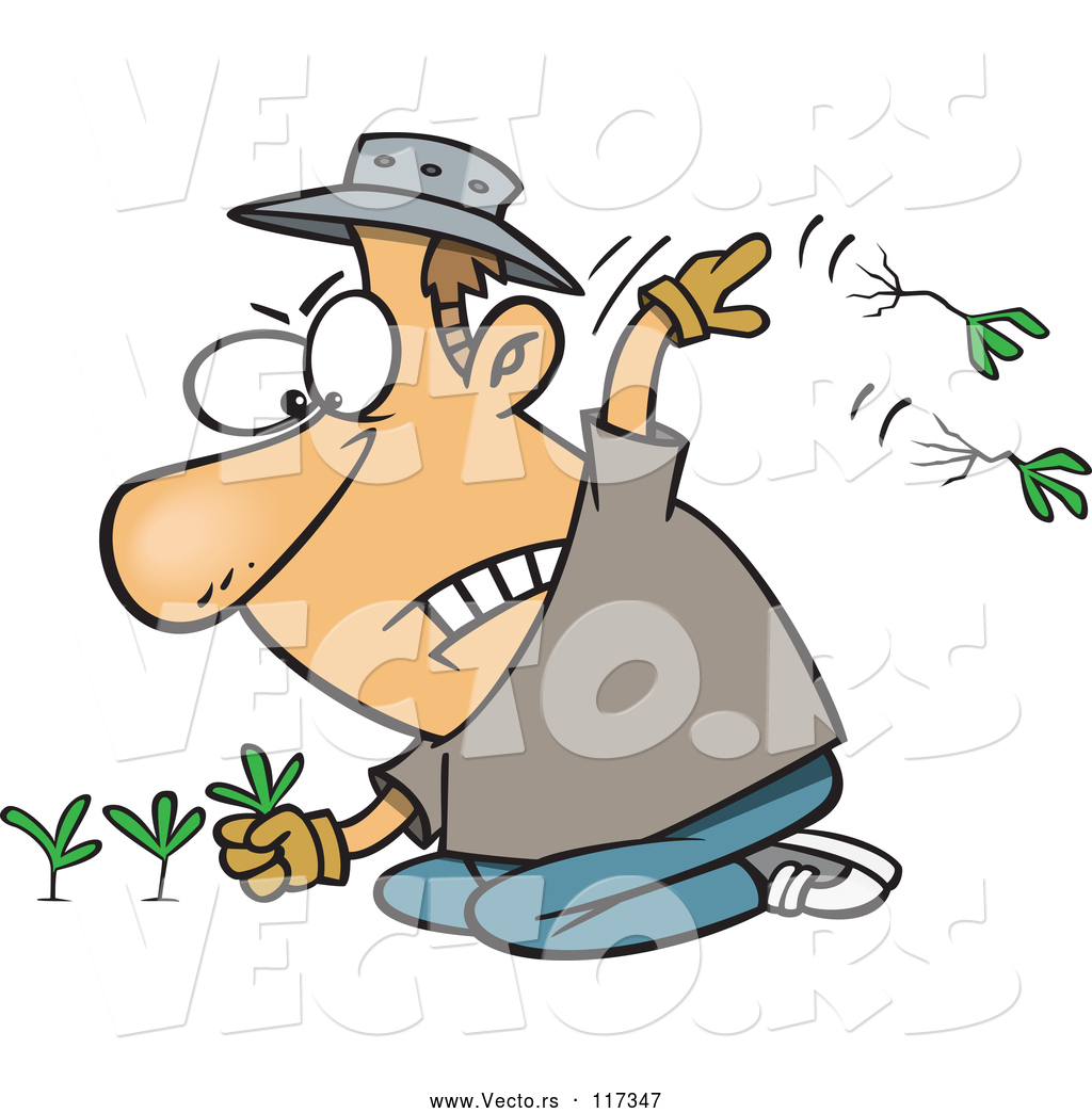 Vector of Cartoon White Mad Guy Pulling Weeds by toonaday.