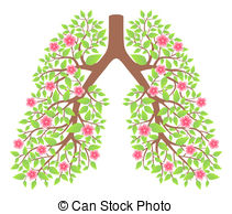 Pulmonary Illustrations and Clip Art. 3,265 Pulmonary royalty free.
