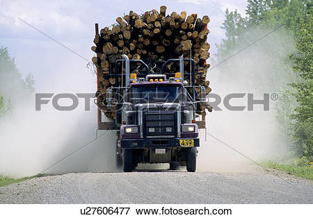 Picture of Logging truck in northern Alberta delivering a load of.