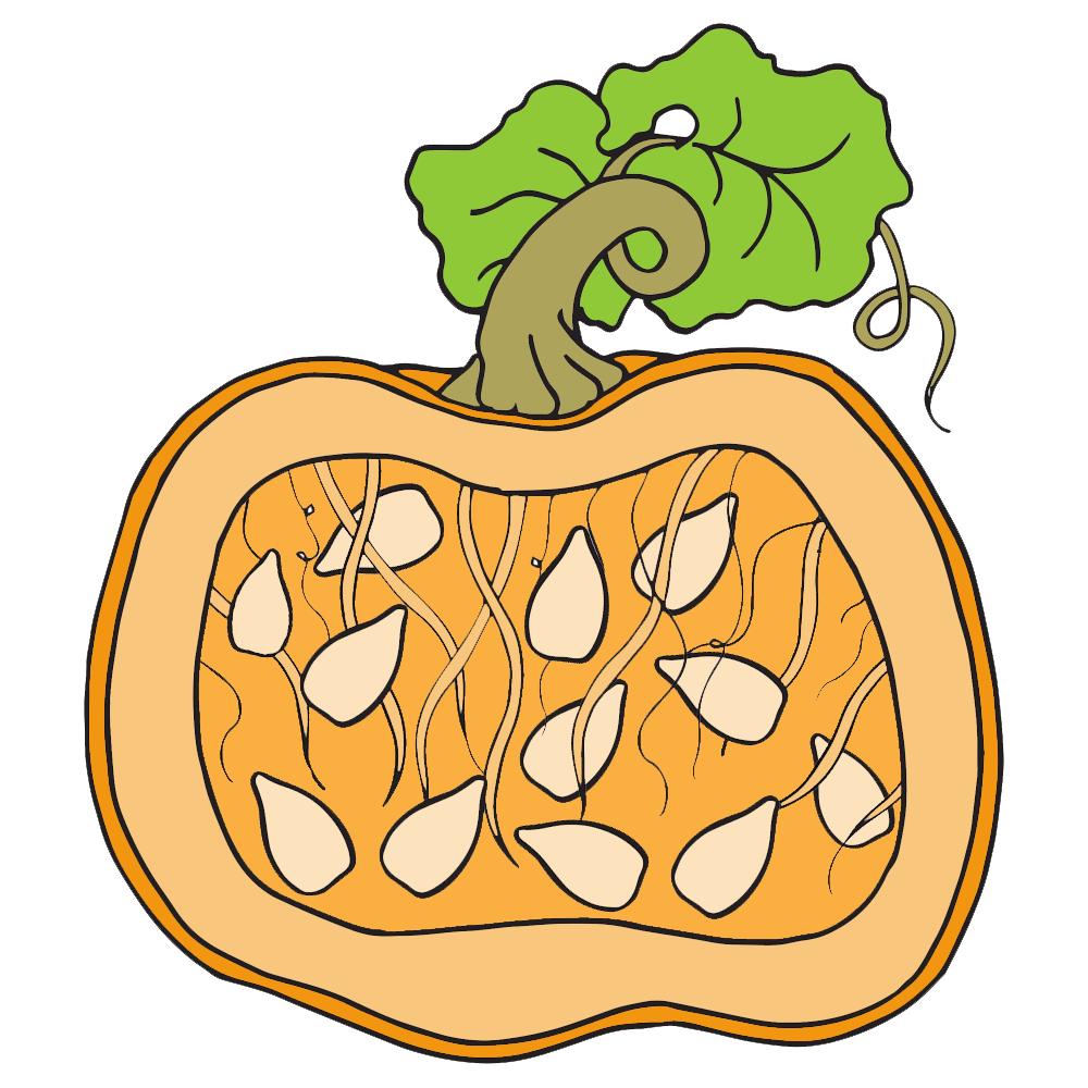 Pumpkin pulp clipart.