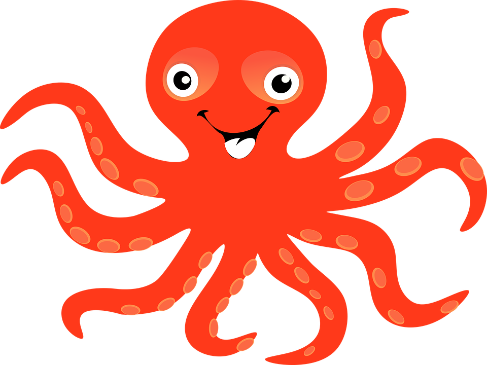 Octopus PNG images free download.