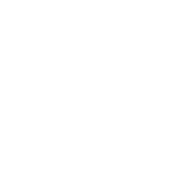 White puma 2 icon.