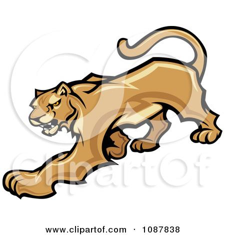 Clipart Roaring Puma Mountain Lion Head Mascot.