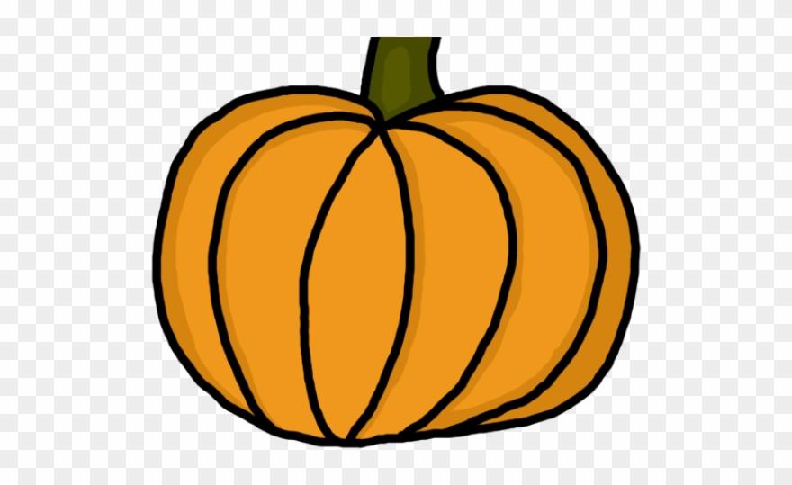 Gourd Clipart Pumpkin Stem.