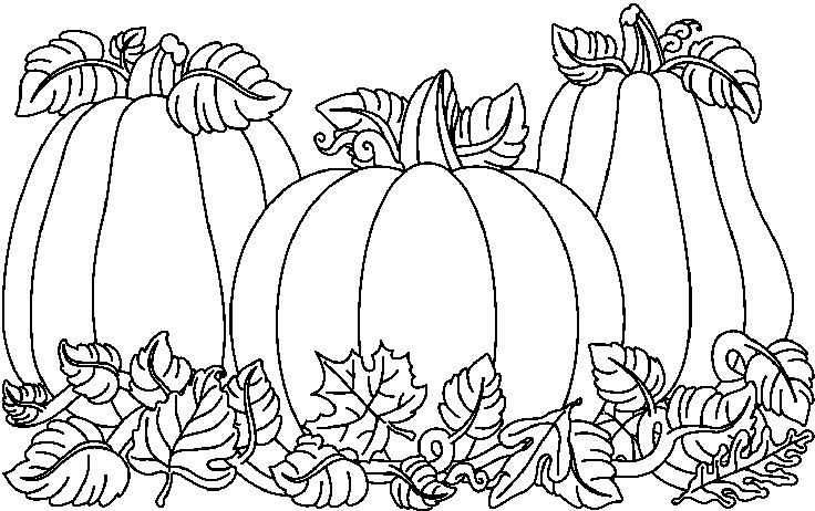 Best Pumpkin Clipart Black And White #1582.