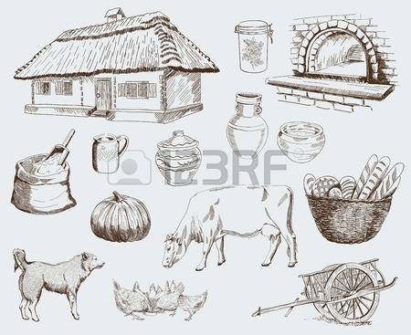 530 Pumpkin Bread Stock Illustrations, Cliparts And Royalty Free.