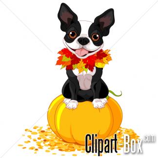 CLIPART PUMPKIN DOG.
