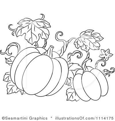 Top 17 ideas about Pumpkins on Pinterest.