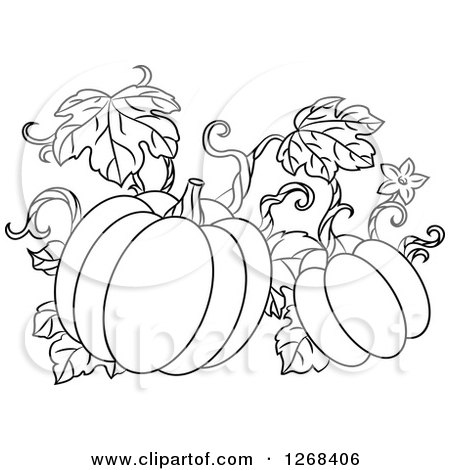 Clipart of a Black and White Pumpkin Vine.