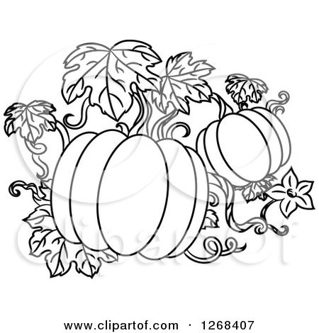 Pumpkin Clipart Black And White Vines.