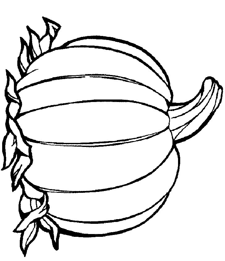 Pumpkin Line Drawing.