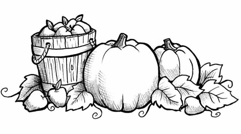 Awesome Fall Printable Coloring Pages Pictures.
