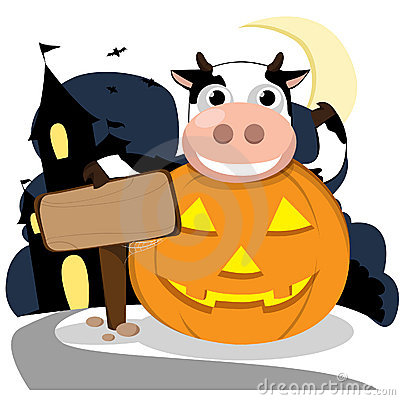 Cow Pumpkin Stock Illustrations.
