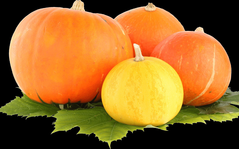 Trio Pumpkin transparent PNG.