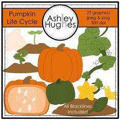 Pumpkin Sprout Clip Art.