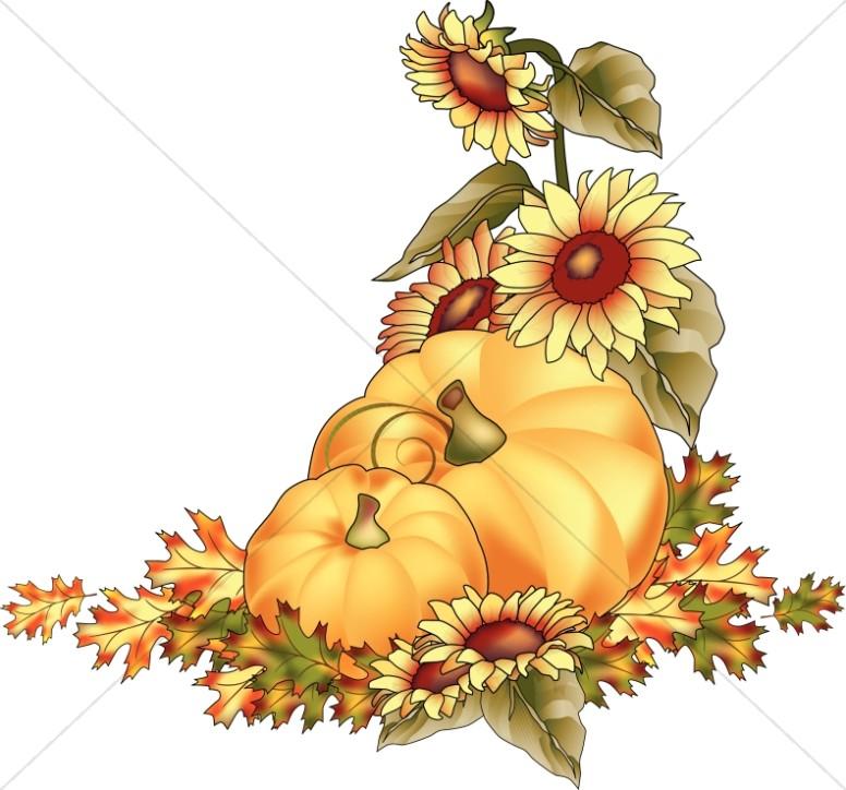 Pumpkins At Harvest Color Clipart.