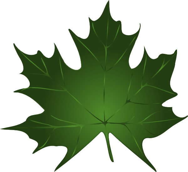 Leaves pumpkin leaf clip art free clipart images.