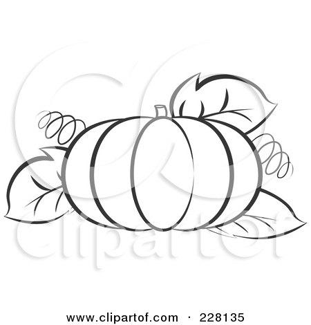 Pumpkin Leaves Clipart (53+).
