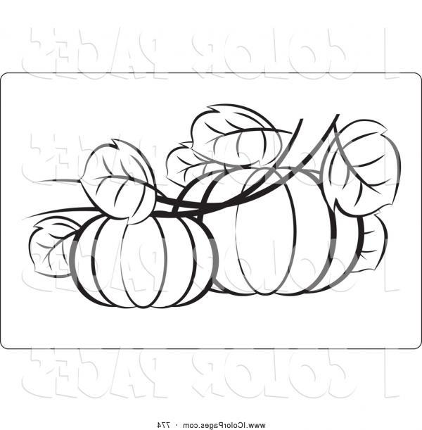 Best 15 Pumpkin Leaf Outline Vector Drawing.