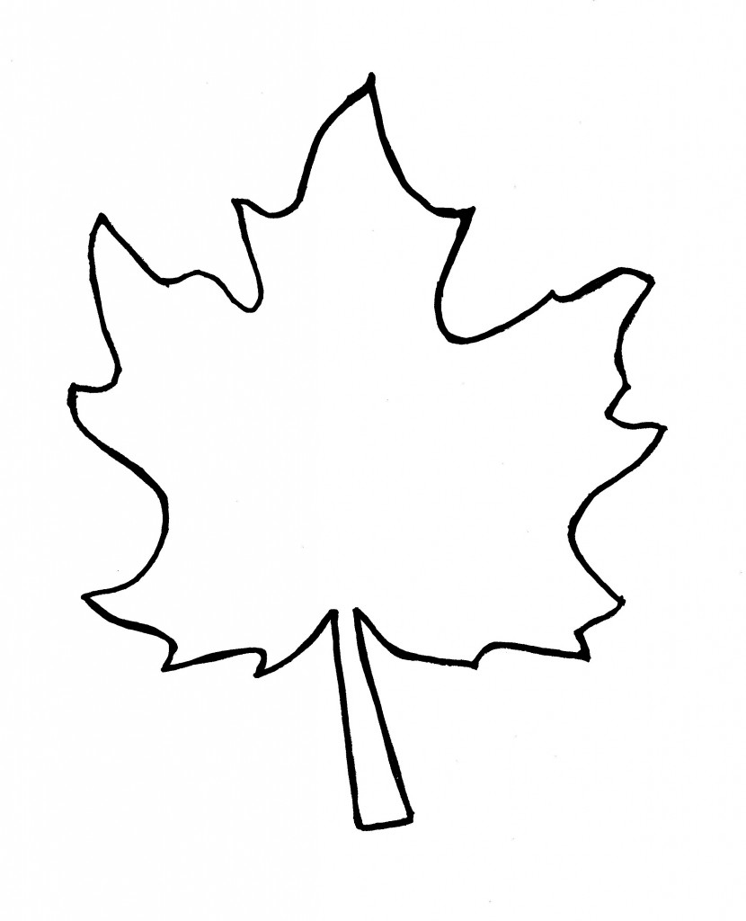 Best Leaf Outline #8653.