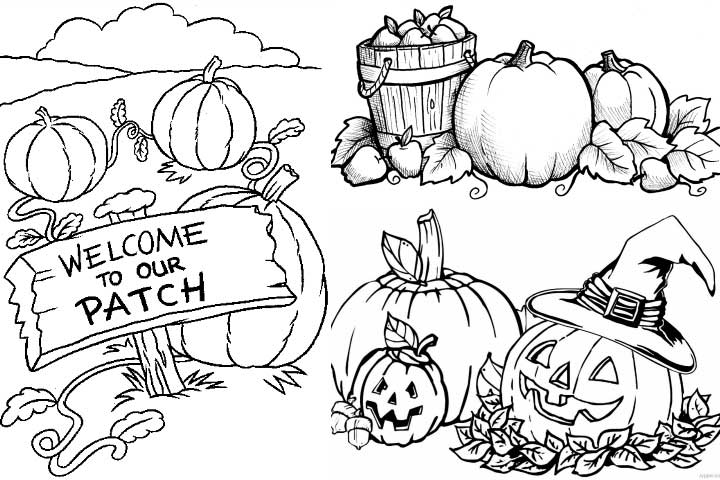 Pumpkin Patch Clipart Black And White (103+ images in.