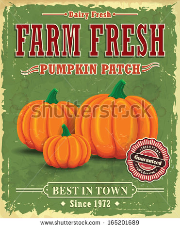 Pumpkin Patch Stock Images, Royalty.