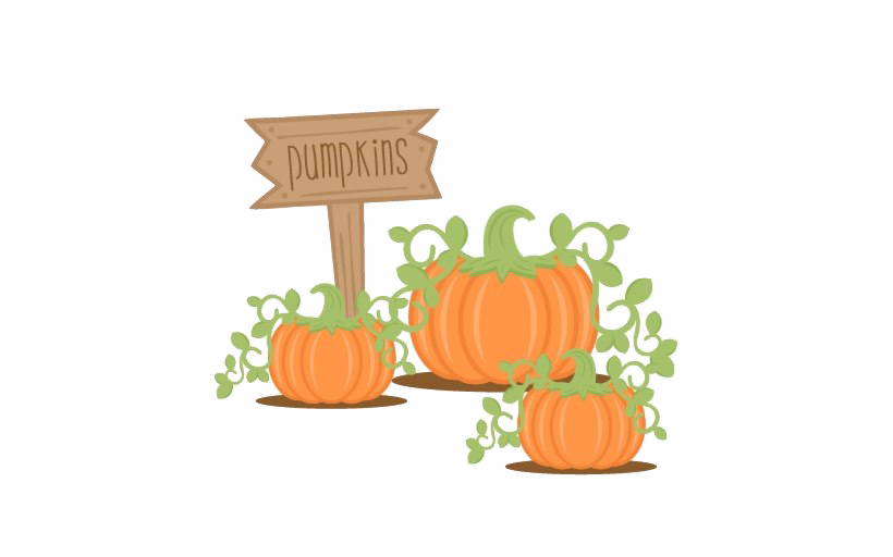 Pumpkin PNG Images Transparent Free Download.