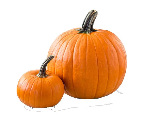 Pumpkin PNG Background Clipart.