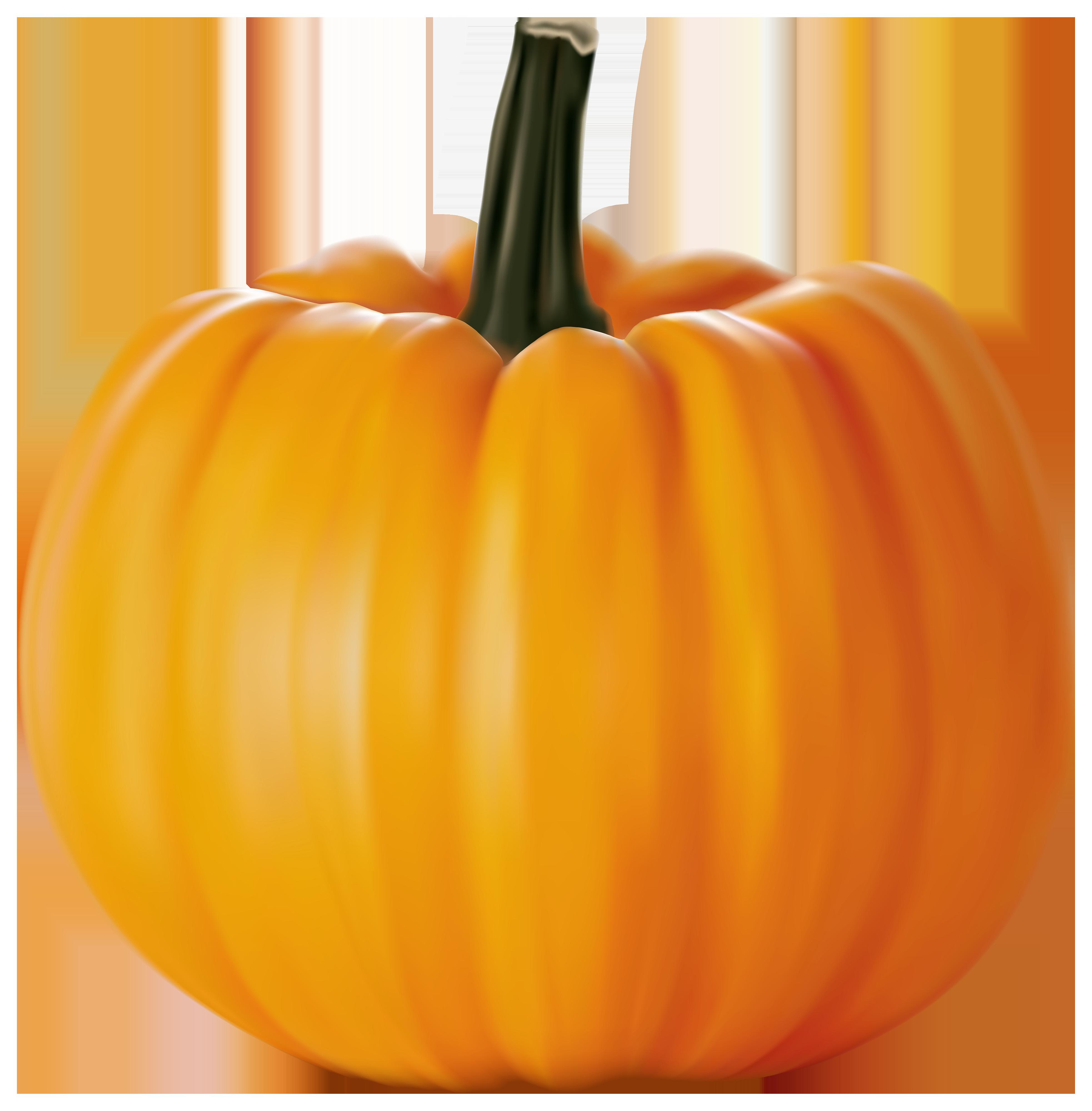 Pumpkin PNG Clipart Image.