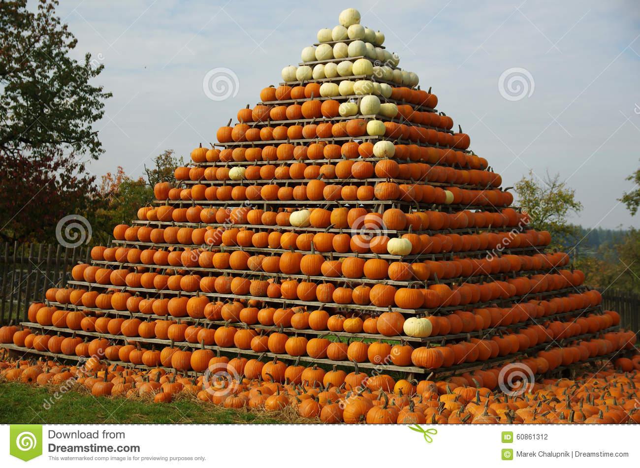 Pumpkin's Pyramid Stock Photo.