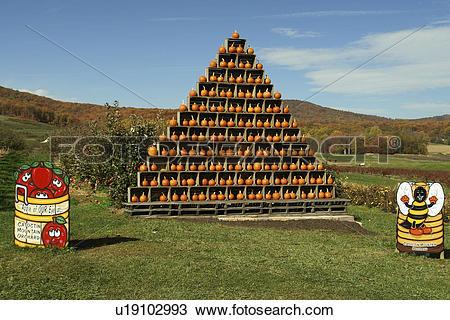 Stock Photo of Emmitsburg, MD, Maryland, Catoctin Mountain Orchard.