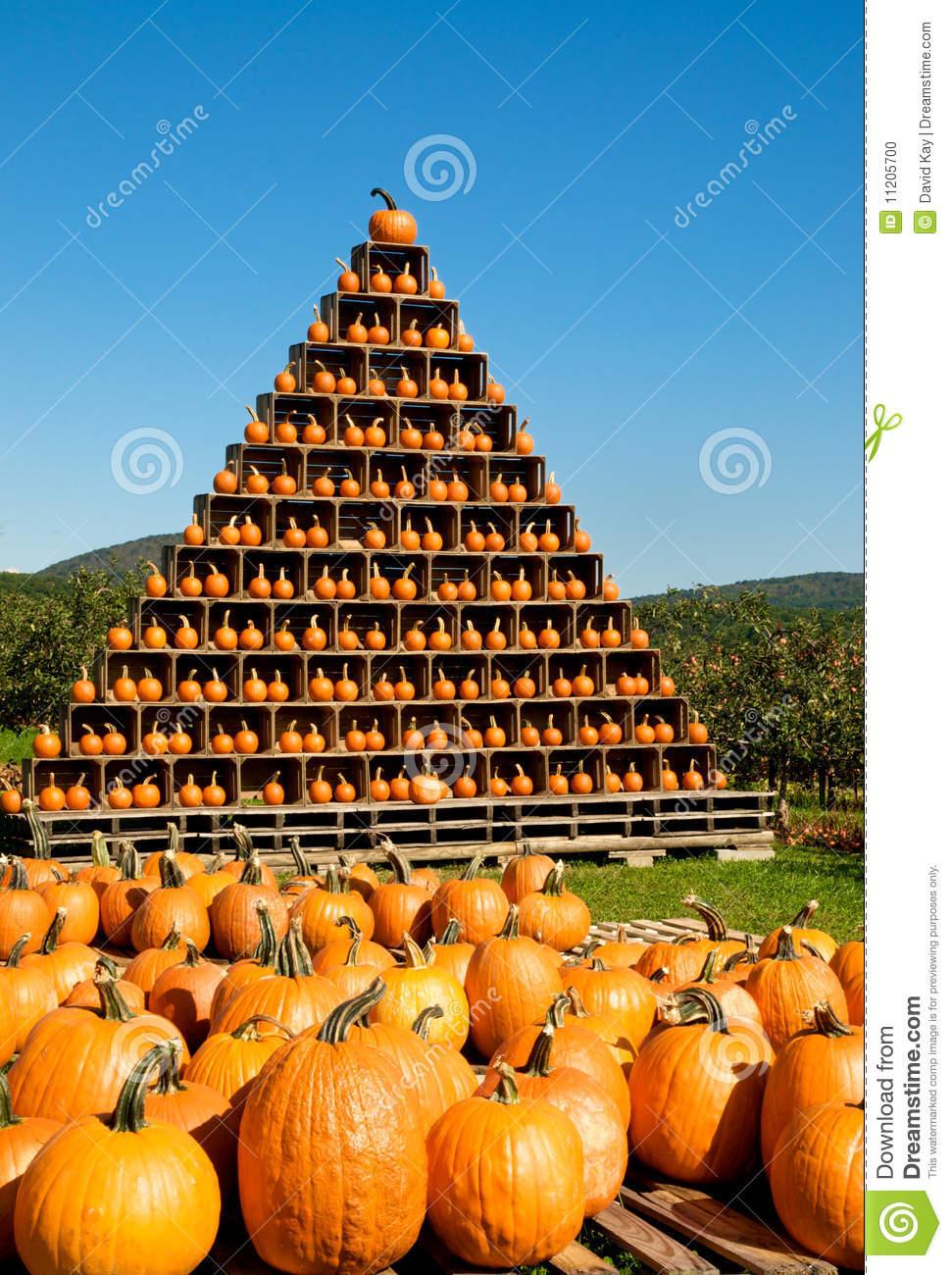 Pumpkin Pyramid Stock Photo.