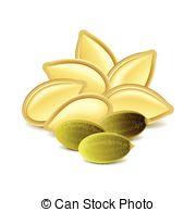 Pumpkin seeds Vector Clipart Royalty Free. 370 Pumpkin seeds clip.